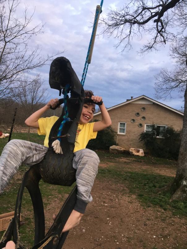 Nolan Horse Swing
